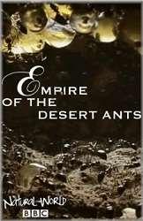 Thế Giới Tự Nhiên: Đế Chế Của Loài Kiến Sa Mạc